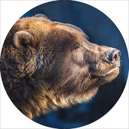 Чехол запасного колеса Медведь R15 диаметр 67см SKYWAY экокожа (полиэстер)