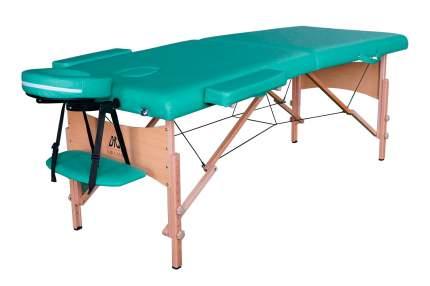 Массажный стол складной DFC Nirvana Relax green