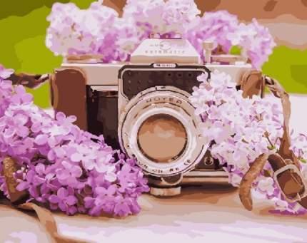 Картина по номерам , Цветы: Сирень и фотоаппарат, 40х50см