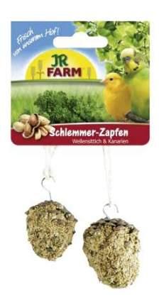 Лакомство для волнистых попугаев и канареек JR Farm, шишка, 120 г