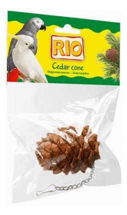 Шишка для птиц RIO,