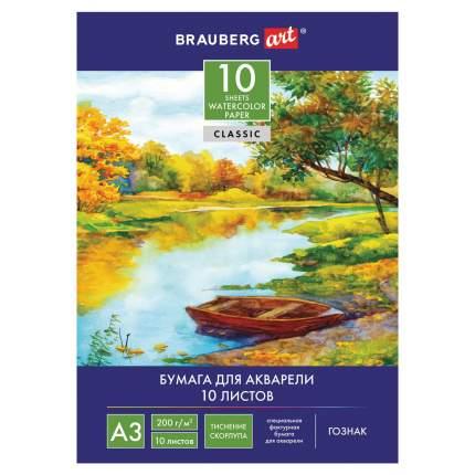 Папка для акварели Brauberg Гознак Скорлупа А3, 10 листов, 297х420 мм
