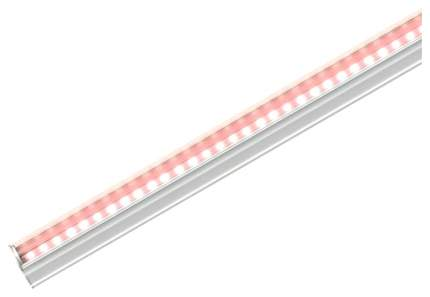 Светодиодный фитосветильник Uniel ULI-P17-14W/SPLE IP20 White UL-00003958
