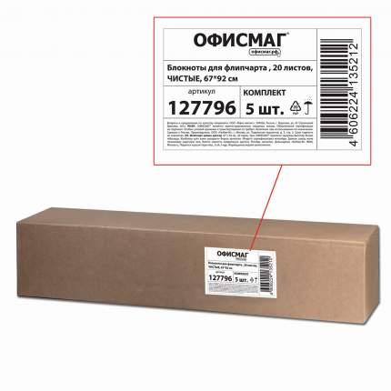 Блокноты для флипчарта Офисмаг 20 листов, чистые, 67,5х98 см, 5 шт.