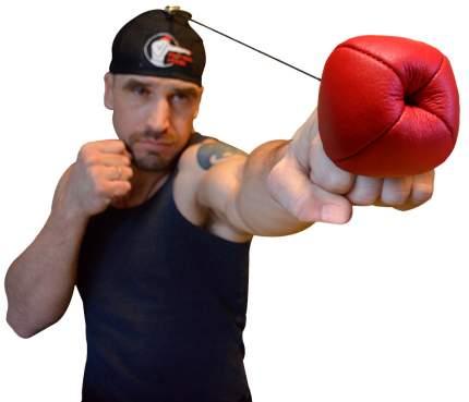 Тренажёр Fight Ball Boxing